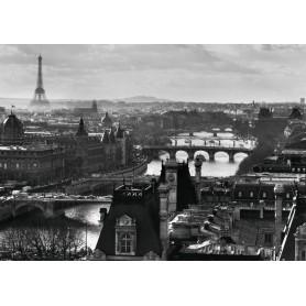 PUZZLE EL SENA EN PARIS 1000 PIEZAS